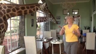 Download Giraffe Manor Kenya 2012.mov Video