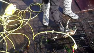 Download Crabbing in Yaquina Bay Video