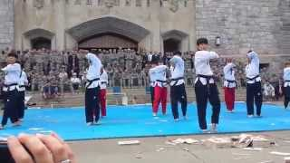 Download World Premier Taekwondo Team performing at West Point Video