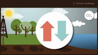 Download Climate Challenge: qu'est-ce que le cycle du carbone? Video