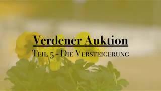 Download Verdener Auktion | Die Versteigerung der Auktionspferde | Teil 5 | verdener-auktion Video
