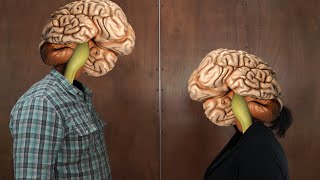 Download Brain Facts Your Brain Doesn't Know About Video