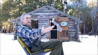 Download Martin's Cabin Part 6 The Finnicky Gray Jay Video