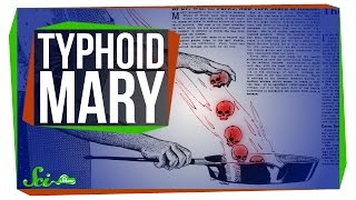 Download What Really Happened with Typhoid Mary? Video