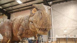 Download Inside the Factory Where Robotic Dinosaurs Come to Life Video