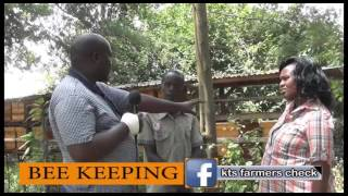 Download FARMERS CHECK: The Business of Bee Keeping. part 1 Video