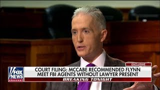 Download 'They'll Do Everything to Disrupt Trump': Outgoing Rep. Gowdy Predicts Dems to Stymie Legislature Video