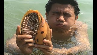 Download Primitive Technology with Survival Skills looking for food Sea snail Video