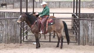Download Ride Smart with Craig Cameron ″Choosing a Horse.″ Video