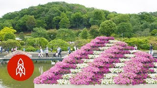 Download Float Through Japan's Floral Fairytale Wonderland Video