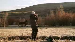 Download Season 1: Episode 2 - Shooting Wildlife Video