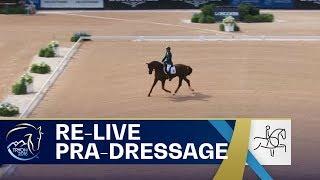 Download RE-LIVE Para-Dressage – Grade IV Team   FEI World Equestrian Games 2018 Video
