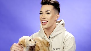 Download James Charles Plays With Puppies While Answering Fan Questions Video