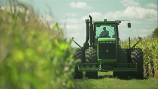 Download Organic farming in France: Green is the new black Video