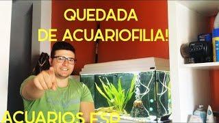 Download QUEDADA ACUARIOS ESP (INFO ABAJO!) Video