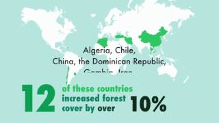 Download State of the World's Forests 2016 (SOFO2016) Video