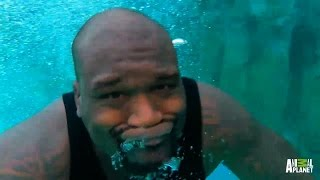 Download Aftershow: Shaq's Tank   Tanked Video