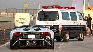 Download 【辰巳PA】空吹かし爆発音他 スーパーカー加速サウンド/Supercars sound in Tatsumi. Aventador, GT4, 599GTO, F12, more Video