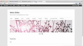 Download WordPress Tutorial - Insert Slideshow into Header Video