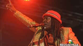 Download Alpha Blondy - Peace In Liberia @ Reggae Jam 2015 Video