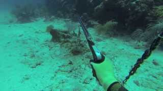 Download Spearfishing Puerto Rico 2013 (A way of life) Video