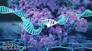 Download New CRISPR-powered device detects genetic mutations in minutes Video