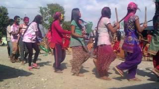 Download Holi dance , Khurkhure 3 birendranagar chitwan ( kriparam chaudhary) Video