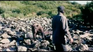 Download Grizzly Man Trailer HD Video