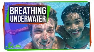 Download Could Humans Ever Breathe Water? Video