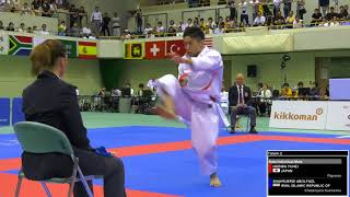Download FINAL. Male Kata. Yuhei HORIBA of Japan. 2018 FISU World University Karate Championships Video