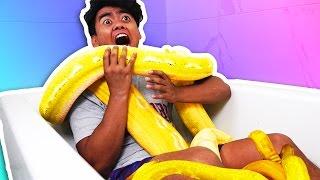Download SNAKE BATH CHALLENGE! Video
