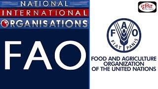 Download FAO - National/ International Organisation Video