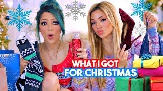 Download What I Got for Christmas 2016!! Niki and Gabi Video