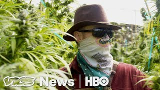 Download This Law Could Make California The Largest Legal Weed Marketplace (HBO) Video