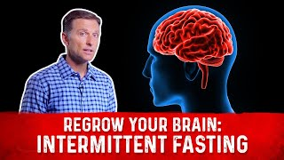 Download How to Regrow Your Brain with Intermittent Fasting Video