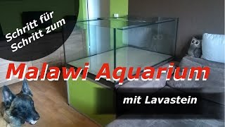 Download Malawi Aquarium mit Lavastein - Aufbaudoku Video