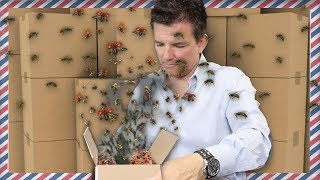 Download SOMEONE SENT ME BUGS IN THE MAIL [Fan Mail Unboxing] | Butch Hartman Video