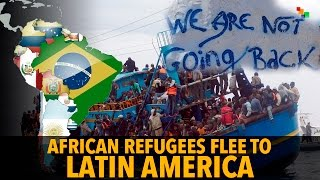 Download African Refugees Flee To Latin America Video