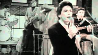 Download The Outsiders - Time Won´t Let Me (1966) Video