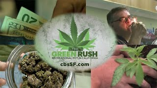Download Green Rush in the Golden State: Marijuana Remakes California Economy Video