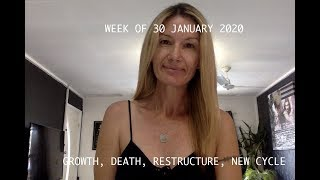 Download WEEK OF 20 JANUARY 2020 Psychic Tarot Amazing spooky accurate Video