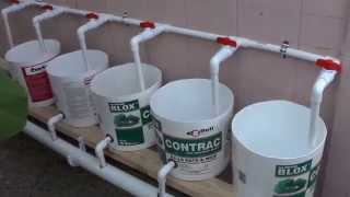 Download How To Make a Dutch Bucket Filmed by my wife #8 7/14/2015 Video