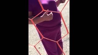 Download Crazy neighbor Video