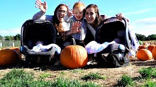 Download THE PUMPKIN PATCH! Video
