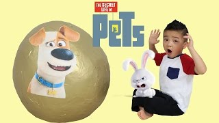 Download The Secret Life Of Pets Giant Golden Toys Surprise Egg Opening Fun With Ckn Toys Video