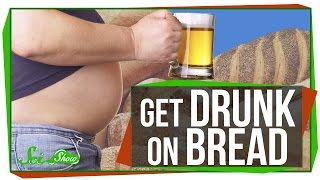 Download How to Get Drunk on Bread Video
