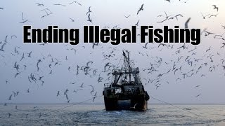 Download ENDING ILLEGAL FISHING Video