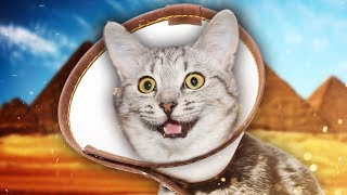Download THE CONE OF SHAME | Rock Of Ages II #5 Video