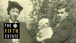 Download Japanese deportations in Canada during WWII : Throwaway Citizens (1995) - The Fifth Estate Video