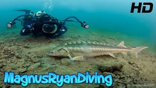 Download Capernwray diving centre 2016 Video